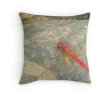 Resting Dragon Fly Throw Pillow