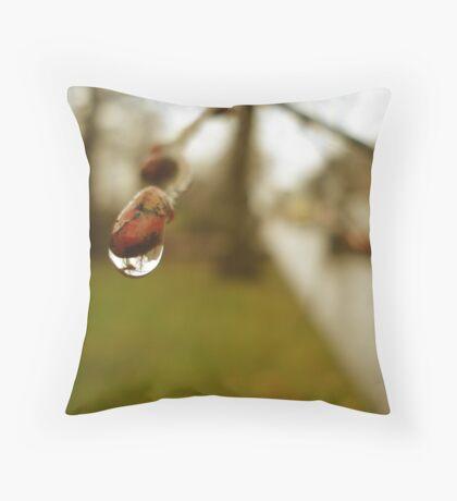 Catching Rain Throw Pillow