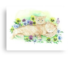 Kittens dozing in pansies Canvas Print