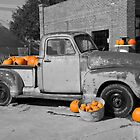 Pumpkin Lovin' by HoltPhotography