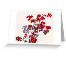 Red on White Greeting Card