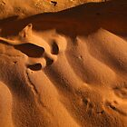 Emu Track in the Sand by Pamela Inverarity