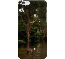 Spirit Pony in a Painted Mangrove iPhone Case/Skin