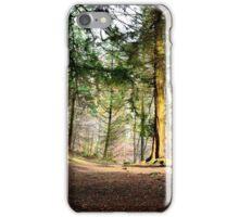 Woodland wonderland (colour) iPhone Case/Skin