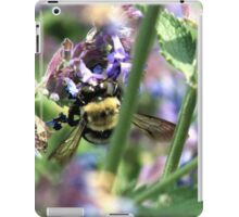 Michigan City, IN: Bumble Bee on Purple Flowers iPad Case/Skin
