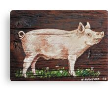 Hog Canvas Print