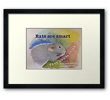 Rats Are Smart Framed Print