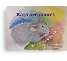Rats Are Smart Canvas Print
