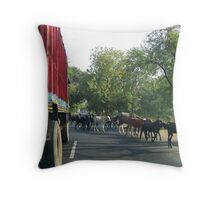 The Locals Series: Crossing Throw Pillow
