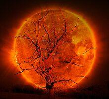 Burning Tree (Challenge entry UA) by sunshine0