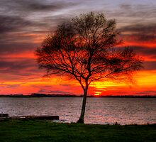 Lonesome Sunset  by doublevision