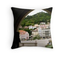 framing delight Throw Pillow