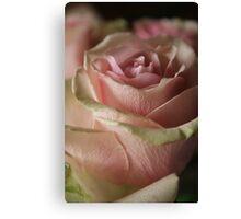 """pink rhapsody"" Canvas Print"