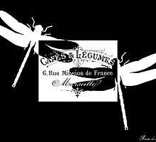 Vintage French dragonflies by MariondeLauzun