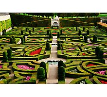 Jardin d'Amour - Villandry Photographic Print