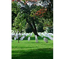 Arlington National Cemetery Photographic Print