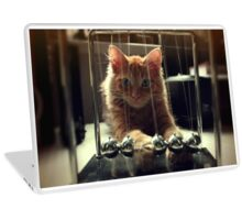 Ginger Cat Laptop Skin