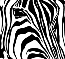 Zebra Project No.3 - big logo black print Sticker