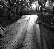 Road Block on the Path to the Light by Zakari