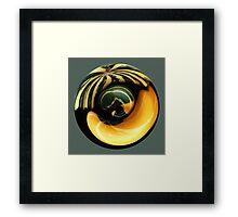 Pumpkin's birth Framed Print