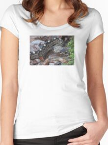 A Beautiful Viper Women's Fitted Scoop T-Shirt