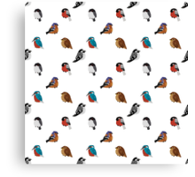 Beautifully Designed Bird Breed Images Canvas Print