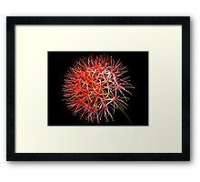 Blood Lily Framed Print