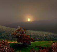 Moonlight by Igor Zenin