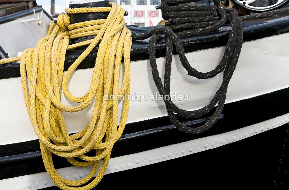 hanging ropes by dominiquelandau