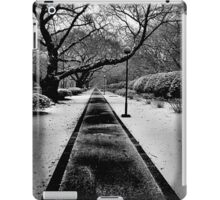 Snowblind (Colorless Section) iPad Case/Skin