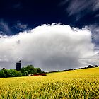 farm and wheat field by imaginaryfriend