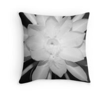 Night Blooming Cereus (B&W) Throw Pillow