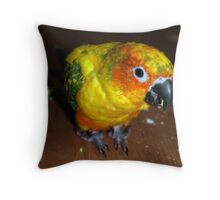 Here's looking at you! Throw Pillow