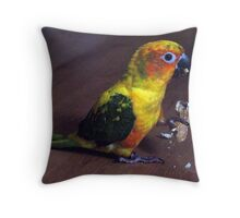 What! My nut... Throw Pillow