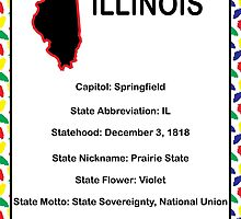 Illinois Information Educational by ValeriesGallery