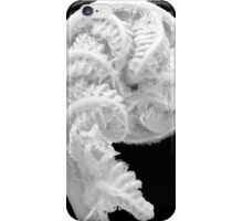 Fern Frawn Unfurling, Otway Range, Victoria, Australia iPhone Case/Skin