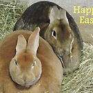 Easter Bunnies by CreativeEm