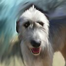 Irish Wolf Hound by Cazzie Cathcart