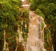 The Red Falls of Iguazu, Argentina/Brazil Border #7 by acaldwell