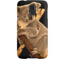 Koala on Branch, Queensland, Australia Samsung Galaxy Case/Skin