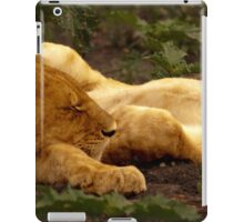 Lions Sleeping after the Kill, Serengeti, East Africa iPad Case/Skin