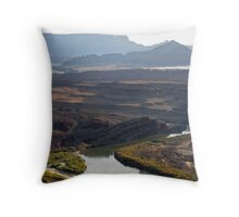 Grand River Throw Pillow