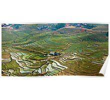 Rice Fields and Farms near Topas, Northeastern Vietnam Poster