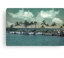 This Dreams in Sight Canvas Print