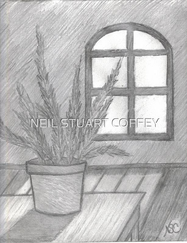 FERN IN THE SUNLIGHT IMPOSED by NEIL STUART COFFEY