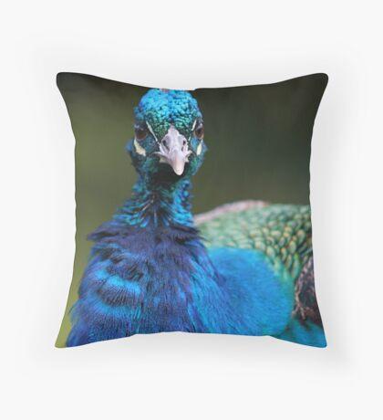 Dapper Dandy Throw Pillow