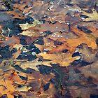 Frozen Autumn by Evan Johnson