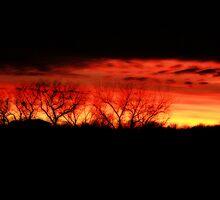 Sunset in Kansas by KBdigital