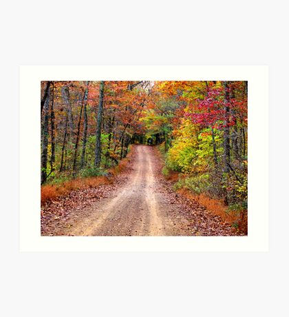 Autumn Country Road Art Print