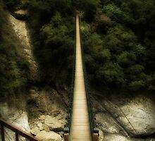 A bridge to... by Sylvia Wu
